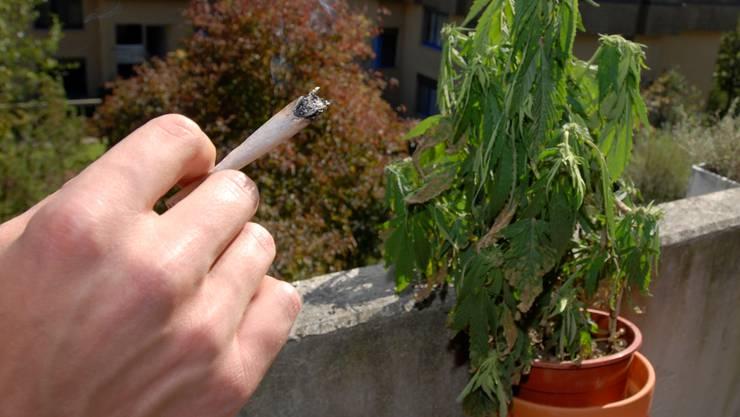 Mehr als ein Viertel der Schweizer Bevölkerung ab 15 Jahren hat schon mindestens einmal im Leben Cannabis konsumiert. Bild: Urs Lindt Pressefotograf BR