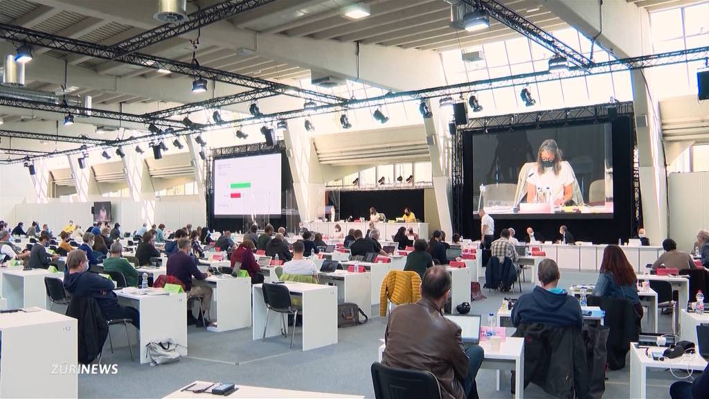 Vision des Gemeinderats: Zürich soll grüner werden