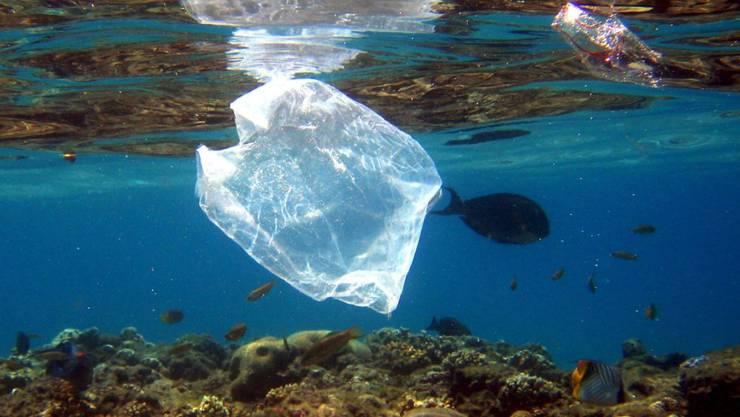 Einweg-Plastiksäcke zählen zu den häufigsten Dingen, die im Abfall an Neuseelands Küsten gefunden werden. (Symbolbild)