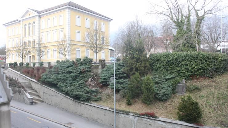 Die Gedenksteine stehen im Hang oberhalb der Bielstrasse zwischen den Schulhäusern.
