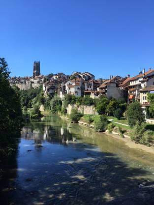 Fribourg an der Saane