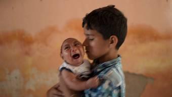 Es gibt einen Zusammenhang zwischen dem Zika-Virus und Babys mit Schädelfehlbildungen.Felipe Dana/Keystone