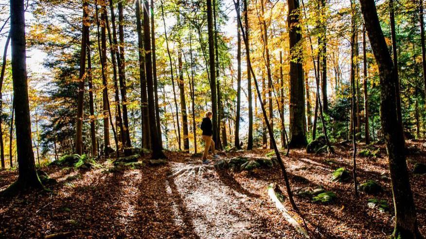 Weekend: Zeitumstellung, Hecht, Tatort, Marathon
