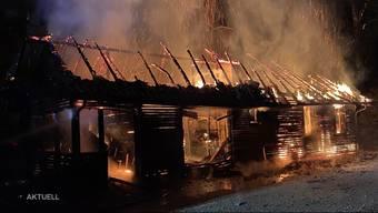 Thumb for 'Nach Flammen-Inferno in Rothrist: Polizei verhaftet mutmasslichen Brandstifter'