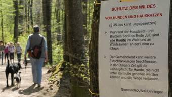 Vom 1. April bis zum 31. Juli herrscht im Wald und an Waldrändern Leinenpflicht. (Symbolbild)