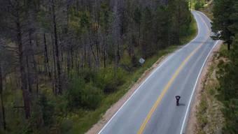 13,26 Stundenkilometer schneller als der bisherige Rekord: Kyle Wester rast ins Guinness Buch.