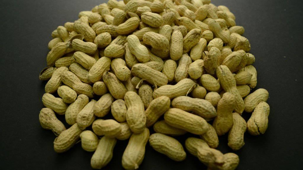 Allergiker haben ein schweres Leben, denn Erdnüsse sind in vielen Lebensmitteln enthalten.