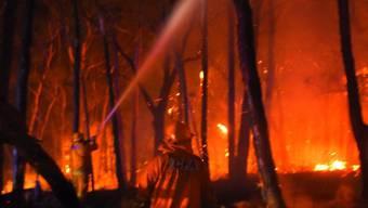 In Australien wüten Buschbrände: Mindestens vier Menschen kam in Westaustralien ums Leben. (Symbolbild)
