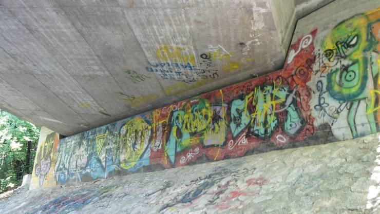 Kunstwerk oder Vandalismus? Die Brücke an der Henzmannstrasse scheint bei den Sprayern ein besonders beliebter Ort zu sein. Selbst an der Decke gibt es aufgesprühte Sprüche.