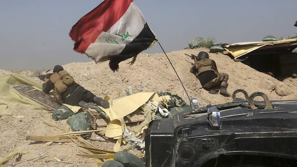 Soldaten der irakischen Armee am Stadtrand von Falludscha, 50 Kilometer westlich der Hauptstadt Bagdad.