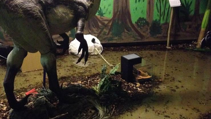 Dinosauriermuseum unter Wasser