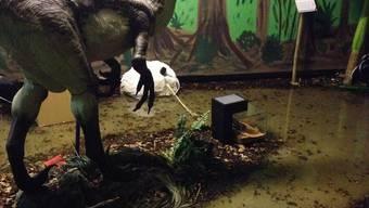 Wasserschaden im Dinosauriermuseum