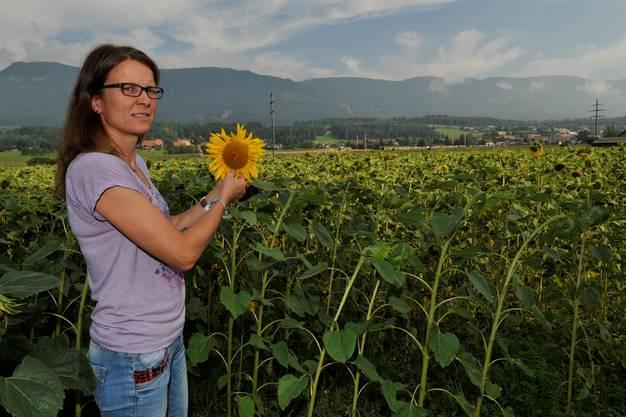 Mirjam Lüthi überprüft das Wachstum der Sonnenblumen
