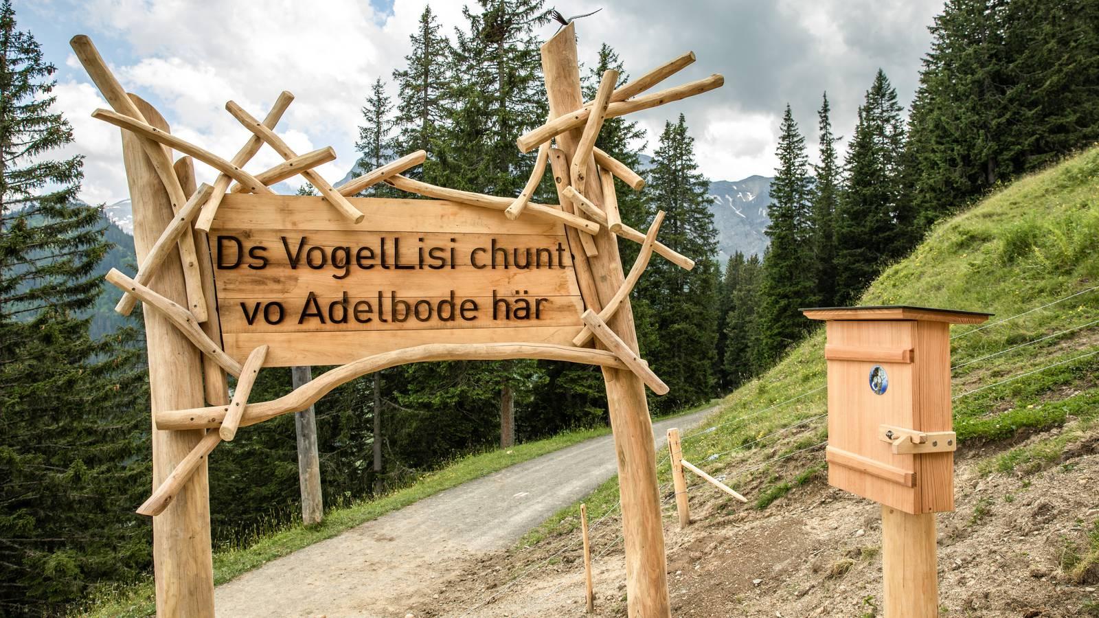 Vogellisiweg Adelboden (© Bergbahnen Adelboden AG )