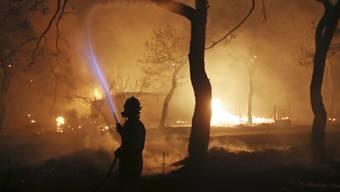 Waldbrände Griechenland (2)
