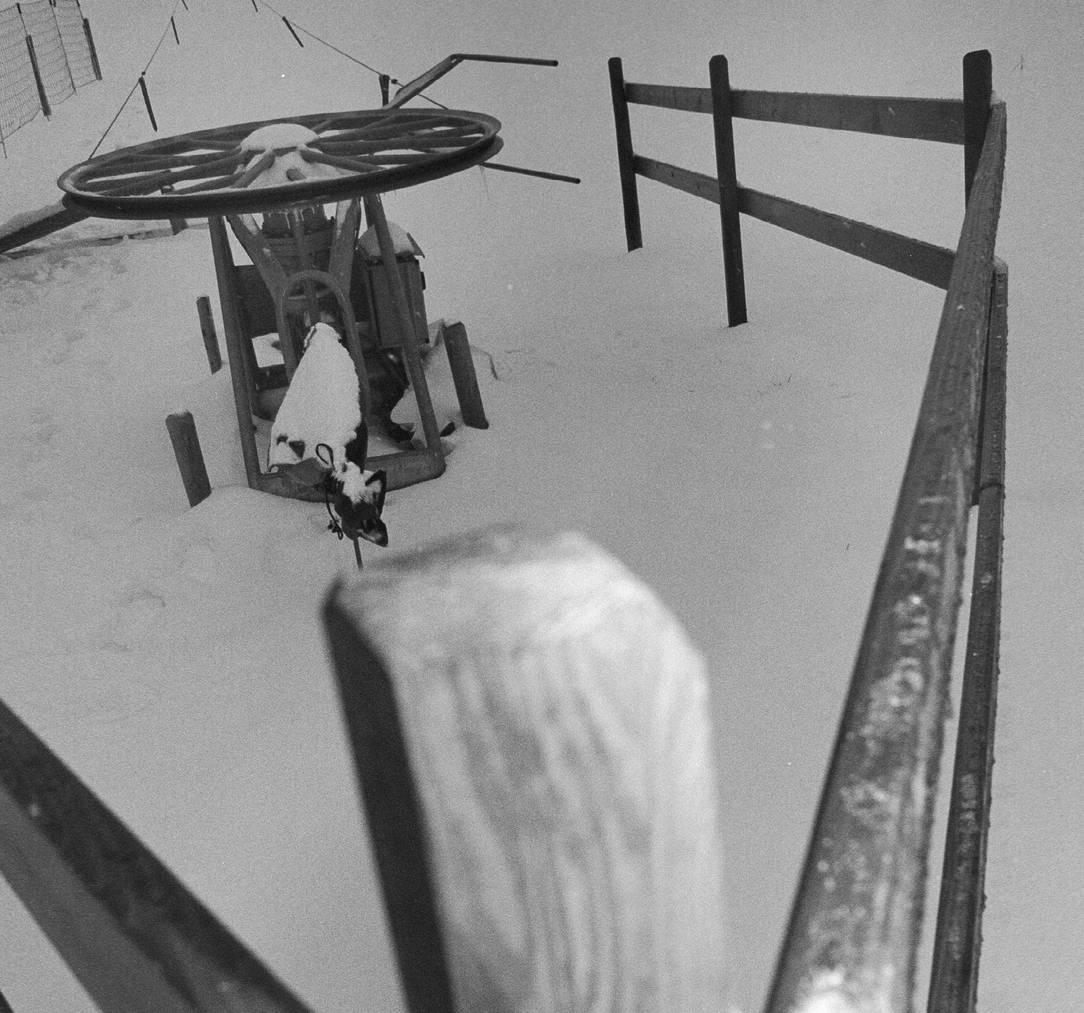 Der Skilift in Heiden sucht dringend Unterstützer für eine neue Steuerung. (Archiv)