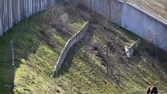 Die Mauer des Bärenparks muss saniert werden (Archiv)