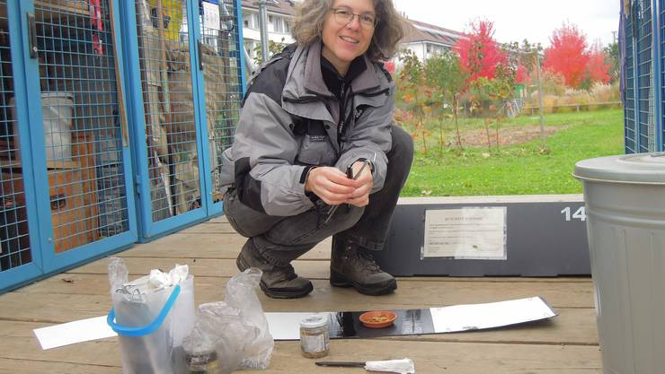 Claudia Kistler ist Zoologin und betreut die Igelbeobachtungen des Vereins Stadtwildtiere.
