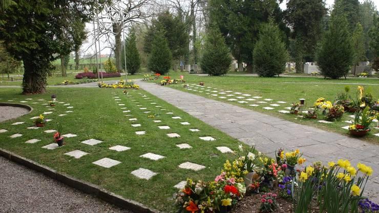 Das Urnengrabfeld auf dem Friedhof St. Katharinen in Solothurn. Dieser Friedhof ist schon seit langem parkähnlich gestaltet. (Archiv)
