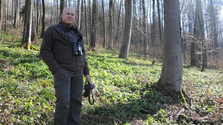 Daniel Meier kümmert sich, wenn er nicht in Dättwil unterrichtet, als Jagdaufseher um den Ennetbadener Wald.NLA