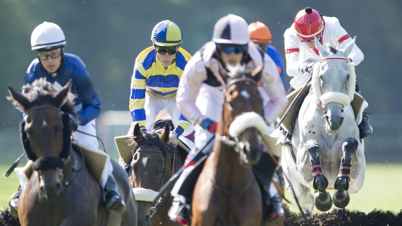 Pferderennen Aarau