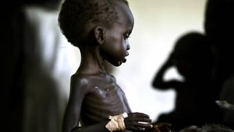 Hungerbekämpfung ist eines der Millenniumsziele