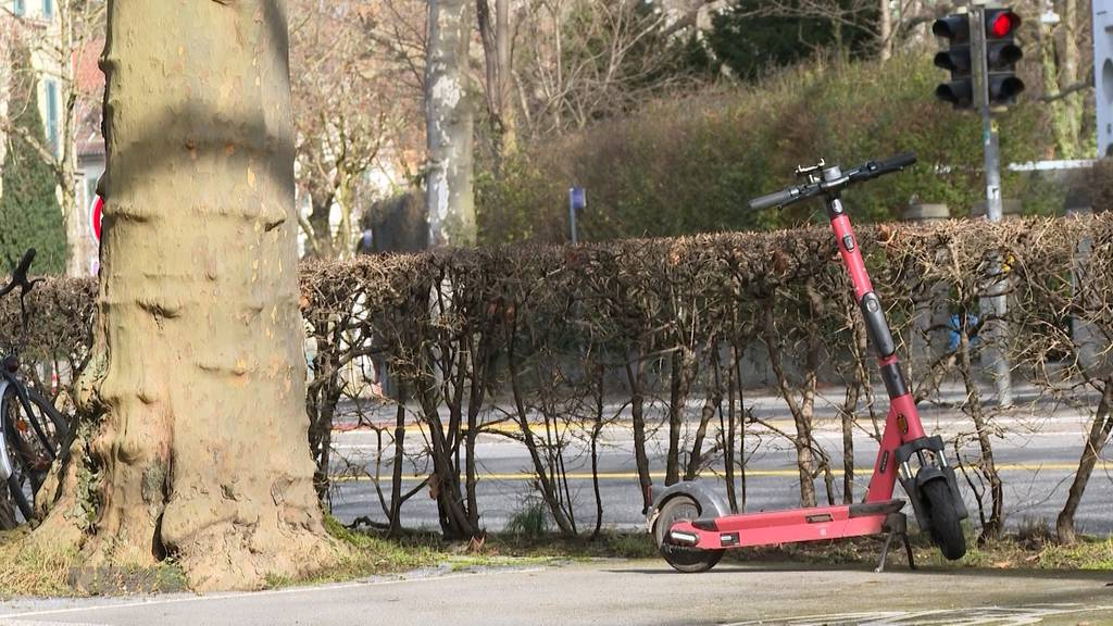 E-Trottinettes boomen trotz Park-Chaos