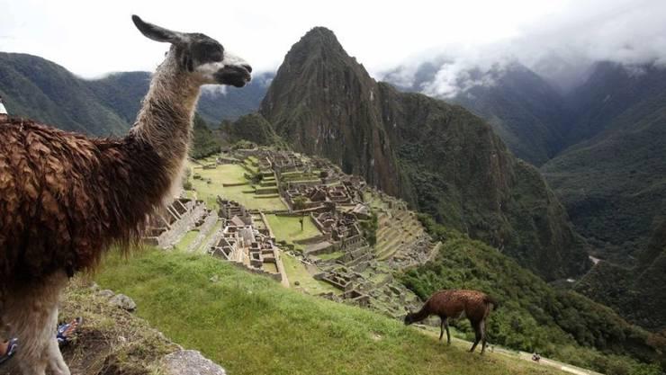 Die Inkastadt Machu Picchu soll noch grüner werden. Eine Million Bäume sollen Erdrutsche vermindern. (Archivbild)