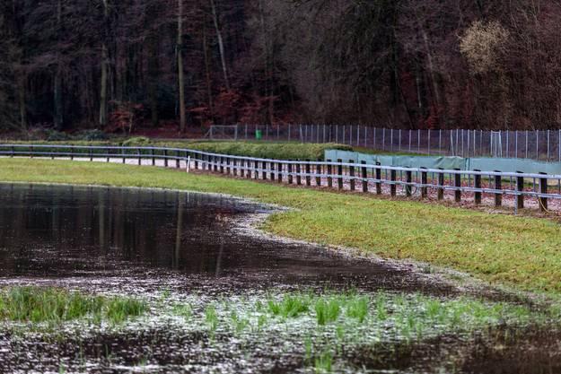 Wegen eines Biberdamms sind Felder und Teile der  Windhunderennbahn überschwemmt.