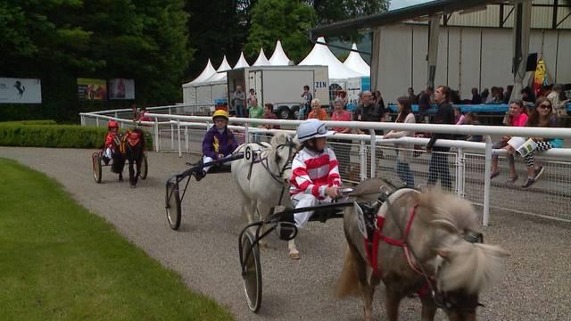 Pferderennen im Aarauer Schachen vom 17. Mai 2015