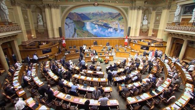 Parlament fordert Abzug aus Syrienkrieg