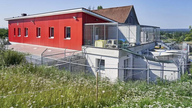 Die Zentrale des Tierrettungsdienstes und dem Tierheim Pfötli.