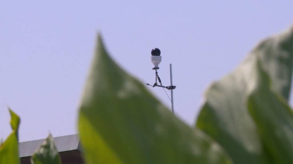 Seepromenade: Stadtpolizei schaltet Videokameras wieder ab