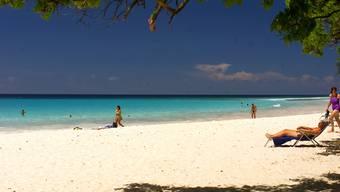 So könnte der Arbeitsplatz aussehen: Einige karibische Inseln haben ein neuartiges Visum eingeführt, das Homeoffice am Strand ermöglichen soll.