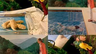 """Amüsante Kunst-Challenge: Hier eine Ingwer-Blumen-Interpretation des berühmten """"Portrait of an Artist (Pool with Two Figures)"""" von David Hockney."""