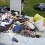 Abfall, das rund um einen Tessiner Bergsee zusammengetragen wurde.