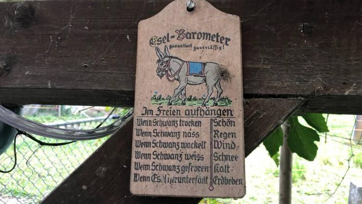 Bei der Familie Gloor hängt ein sogenanntes Esel-Barometer.