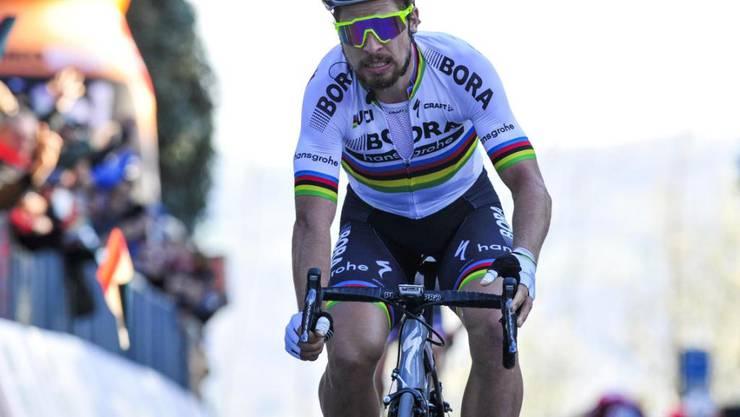 Peter Sagan gilt als aussichtsreicher Sieganwärter in Sanremo