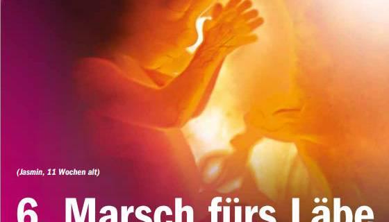 Der Flyer zum Aufruf zum «Marsch fürs Läbe».