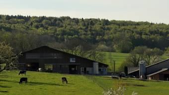 Auf dem Bauernhof von Josef Vögtli in Hochwald hat die Bevölkerung die Möglichkeit, Lebensmittel aus der Region zu entdecken.