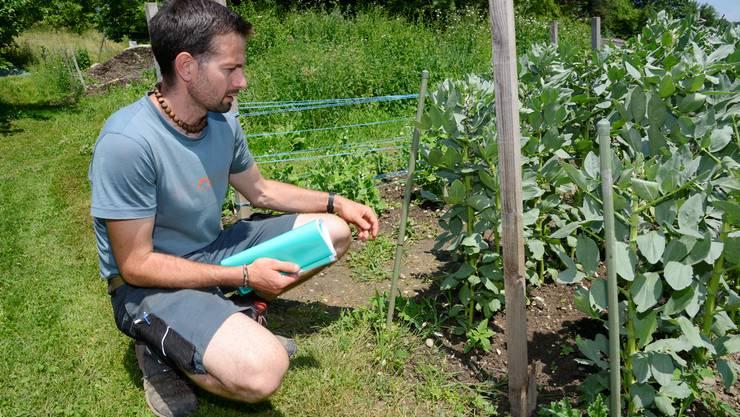 Roland Blaser ist der Leiter der Solodaris-Gärtnerei