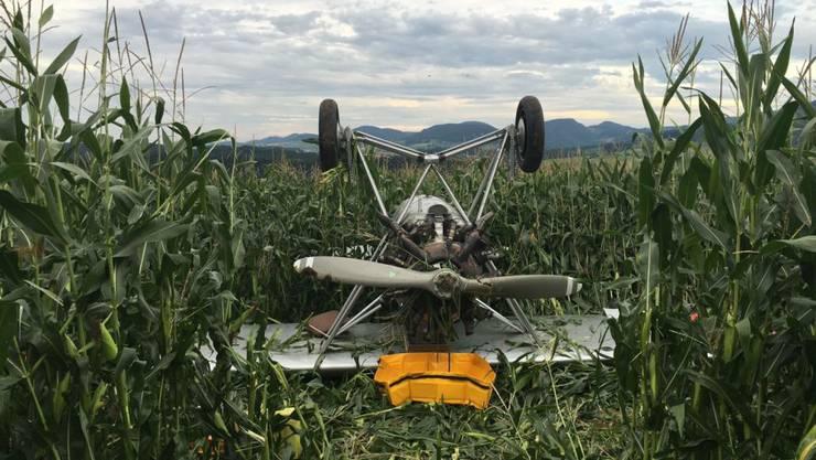 Der Oldtimer-Flieger Dewoitine D 26 landet bei Wittinsburg BL auf dem Rücken in einem Maisfeld.