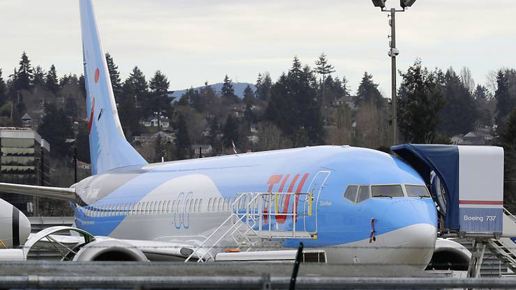 Das Flugverbot für die Boeing 737 MAX-Flugzeuge hat beim deutschen Reisekonzern Tui 2019 zu einem Gewinnrückgang um fast die Hälfte geführt. (Archivbild)