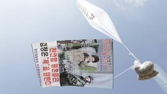 Flugblätter und ein Poster an einem Ballon, der sie über die Grenze nach Nordkorea tragen soll. (Archiv)