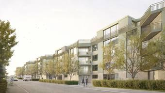 So soll die künftige Überbauung der Max-Wiederkehr-Stiftung von der Windeggstrasse aus aussehen.