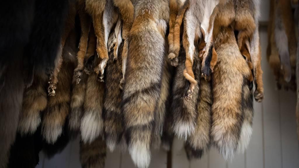 Bundesrat lässt bei neuen Regeln für Pelze eine Hintertür offen