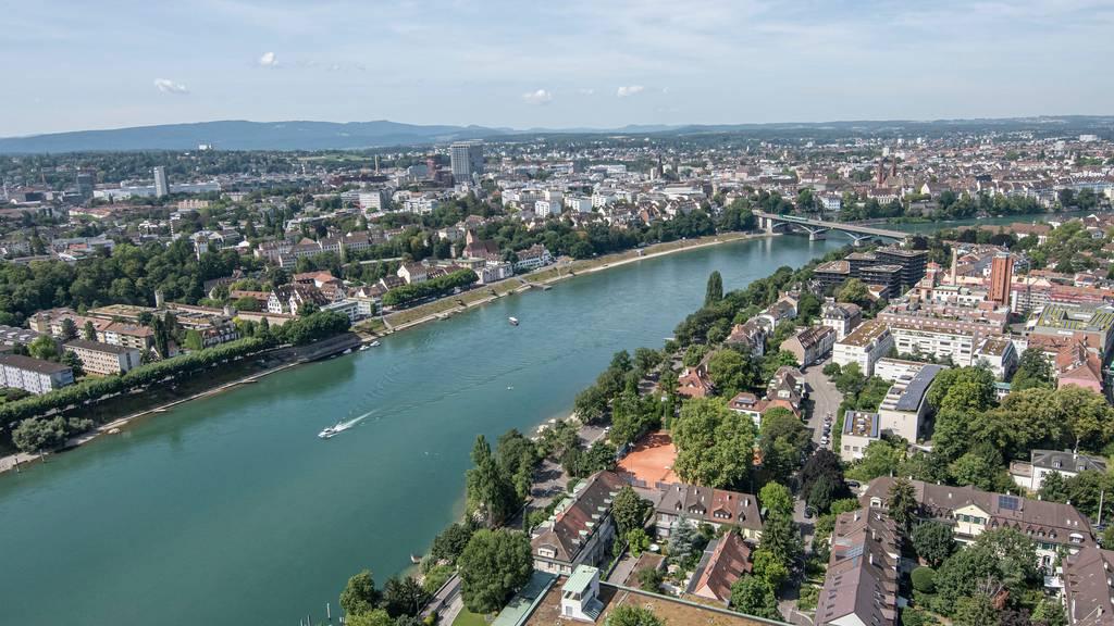Rhein ist wieder sauberer und zieht Wanderfische an
