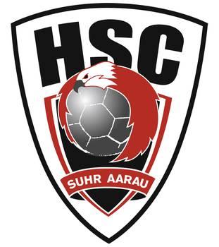 Verein: Handball Club