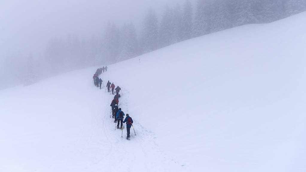 Schneeschuhlaufen erfreut sich wachsender Beliebtheit. (Archivbild)
