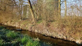 Die Bünz bleibt Vorfluter für das gereinigte Abwasser, dank Einbau einer Mikroverunreinigungsstufe in der ARA Muri.